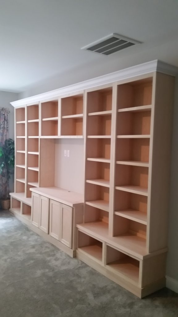 Raleigh Large Entertainment Center Built-in